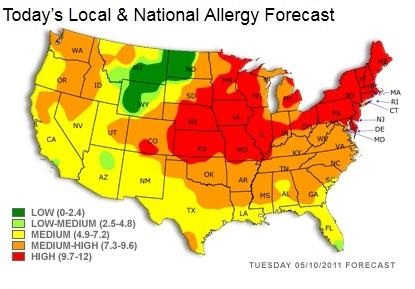 Pollen count 05-10-2011-2