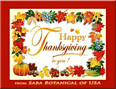 Happy Thanksgiving from Saba Botanical of USA