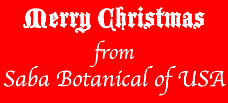Merry Christmas from SABA Botanical of USA
