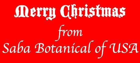 Merry Christmas from SABA Botanical of USA